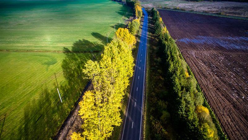 Живописные осенние дороги Карельского перешейка