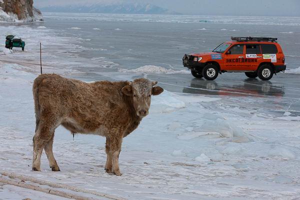 на берегу озера Байкал